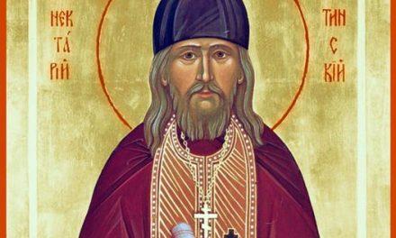 Свети Нектариј Оптински и мачето