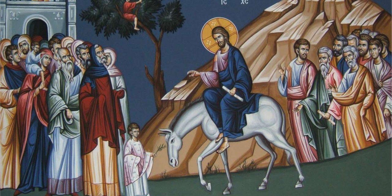 Радувај се ќерко Сионска, ете Царот твој доаѓа!
