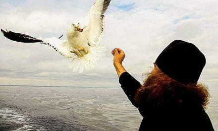 Моќта на љубовта е во надежта